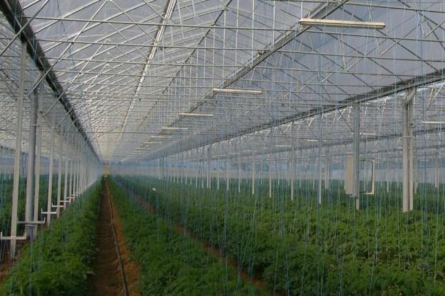 KRITIFIL®Special agricultural films
