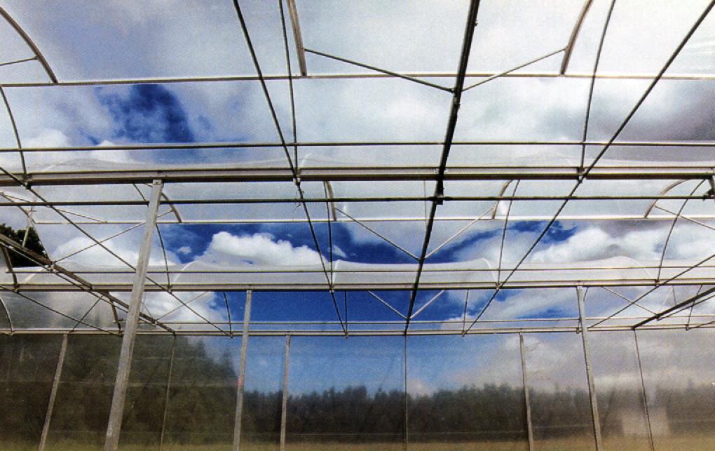 KRITIFIL® greenhouse filmsLight transmission