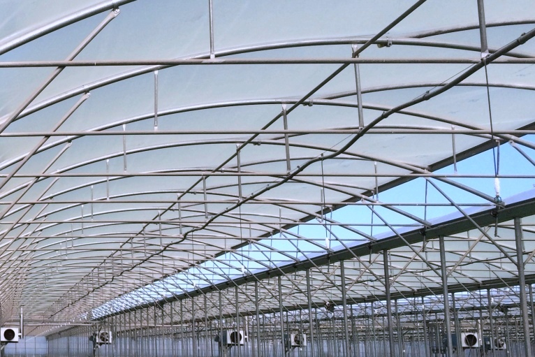 KRITIFIL® greenhouse filmsCooling effect